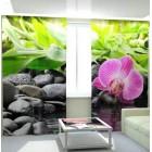 Фотошторы Несравненная орхидея