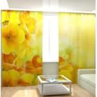 Фотошторы Солнечный цветок