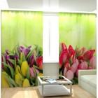 Фотошторы Тюльпаны с росой