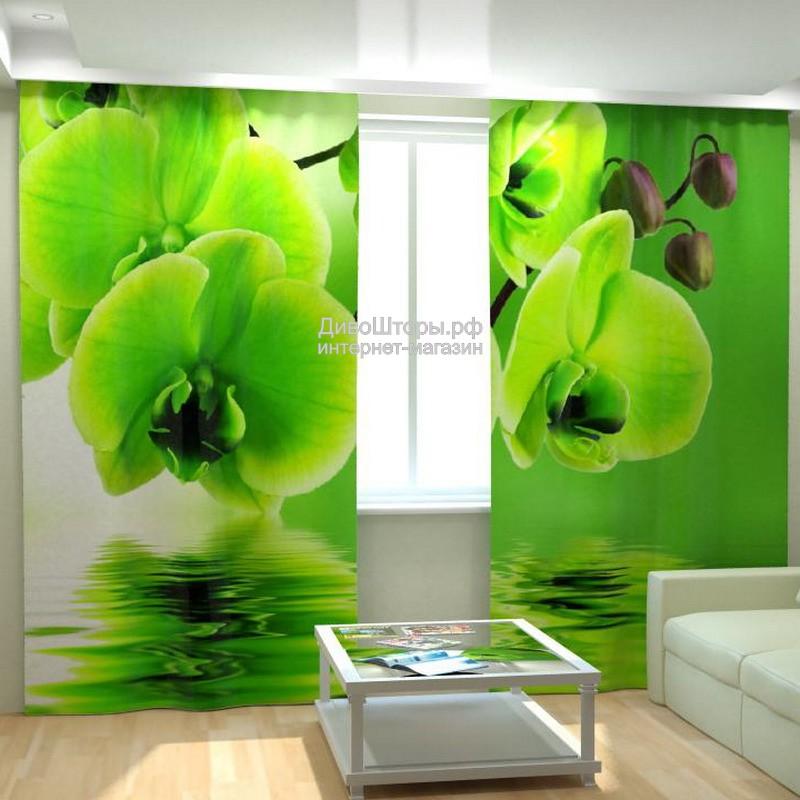 Фотошторы Зеленые орхидеи
