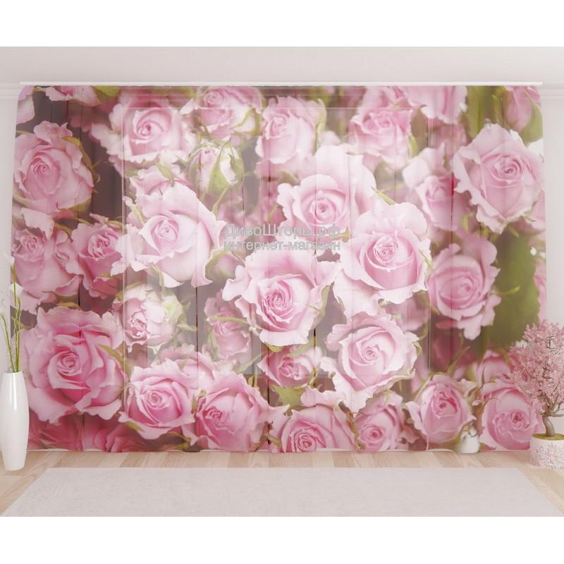Фототюль Нежные розы