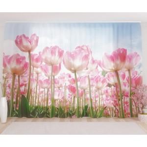 Фототюль Высокие тюльпаны