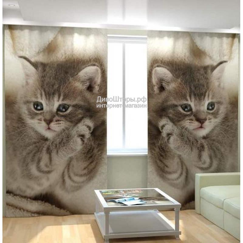 Фотошторы Дымчатый котенок