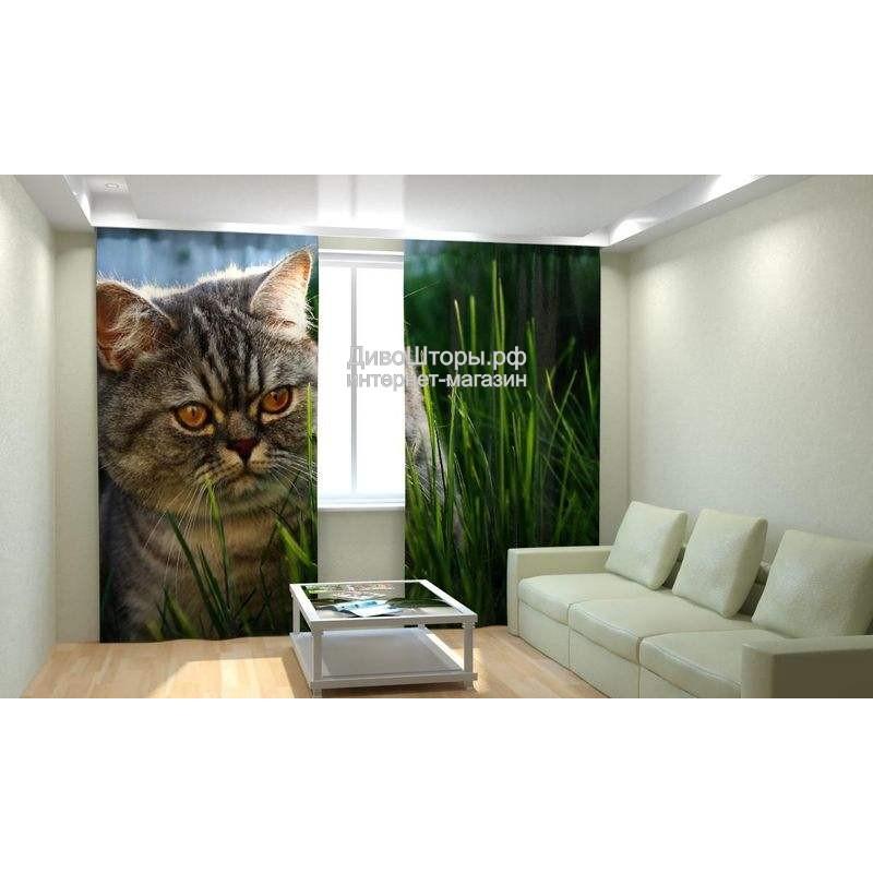 Фотошторы Кот в траве