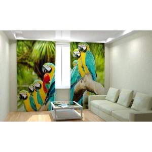 Фотошторы Пестрые попугаи
