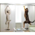 Фотошторы Танцующие собаки