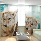 Фотошторы Волки